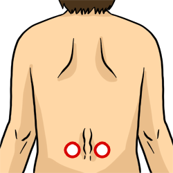 Acupressure Point - Bladder 21