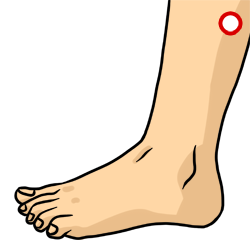 Acupressure Point - Gallbladder 35
