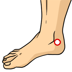 Acupressure Point - Kidney 3