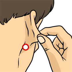 Acupressure Point - Triple Energizer 17