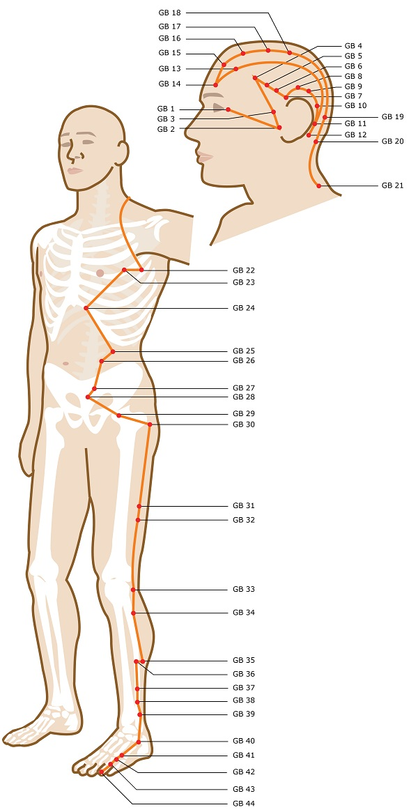 Gallbladder Meridian Acupuncture Points